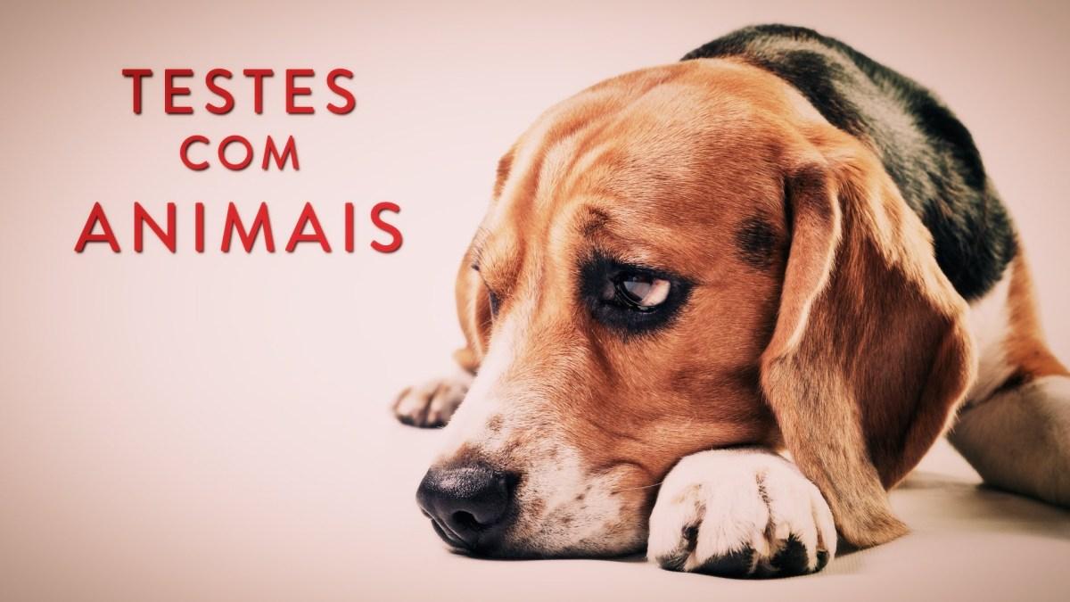 2017: companhias que fazem testes com animais
